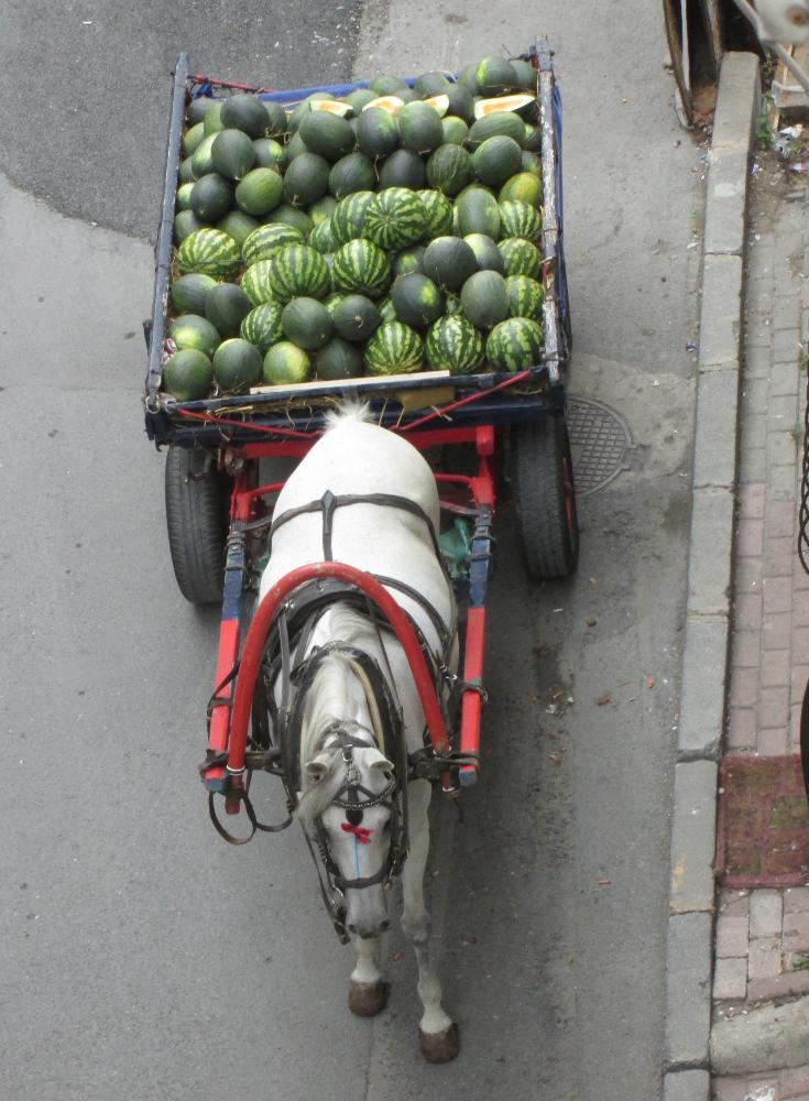 melon vendor 1000x735