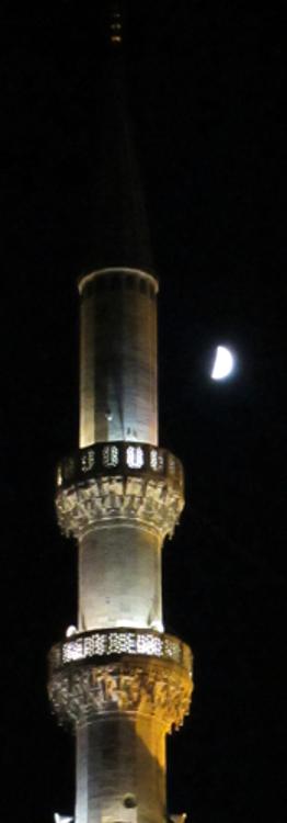 moon and yeni camii  262x750