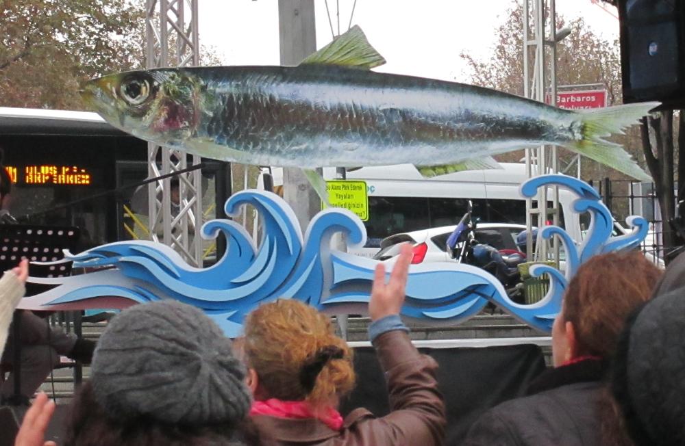 Beşiktaş Hamsi Şenliği (4) fish worship