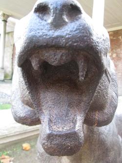 lion-tiger Topkapı (3) 250x333